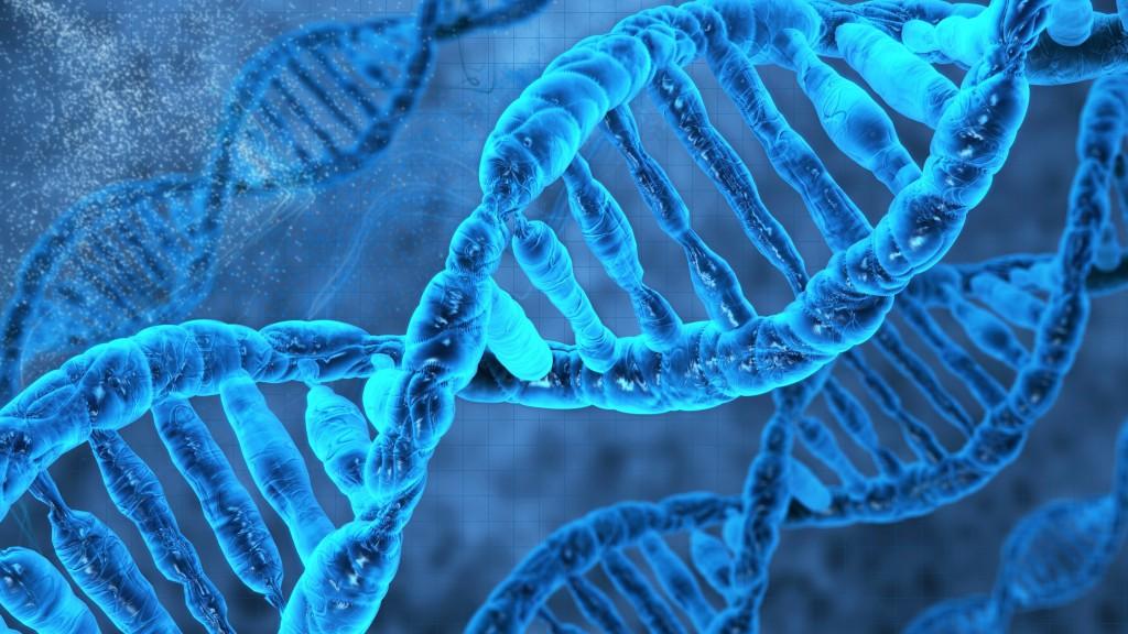 DNA-Molecule-3D